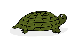 Happy-Turtle